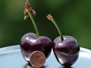 cherries-167810_640