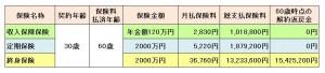 021-%e3%83%a9%e3%82%a4%e3%83%95%e3%82%a2%e3%82%a6%e3%82%bf%e3%82%a4%e3%83%ab%e7%94%a8-%e5%90%84%e4%bf%9d%e9%99%ba