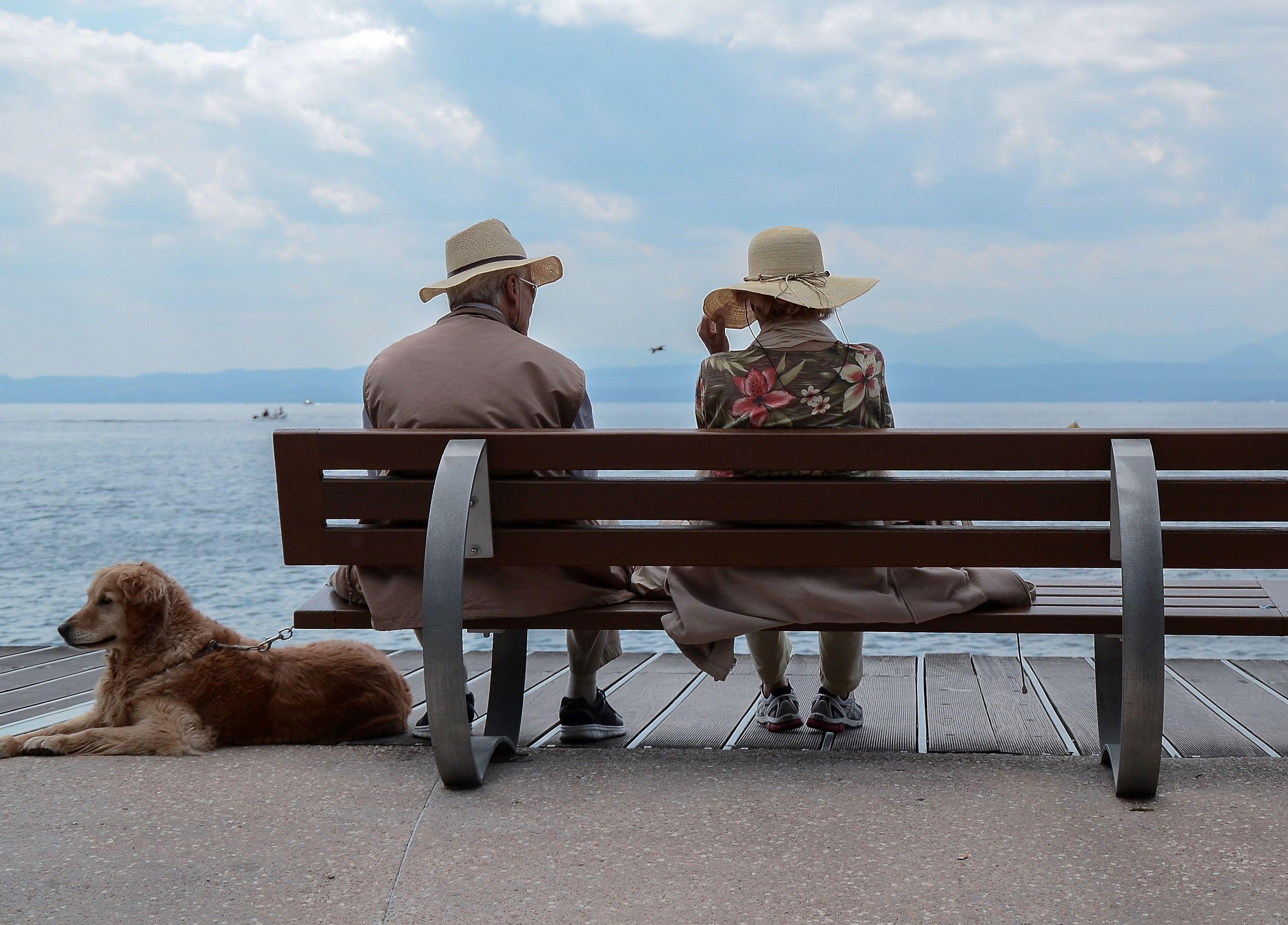 介護は誰が看る?東京海上日動あんしん生命「長生き支援終身」の解析
