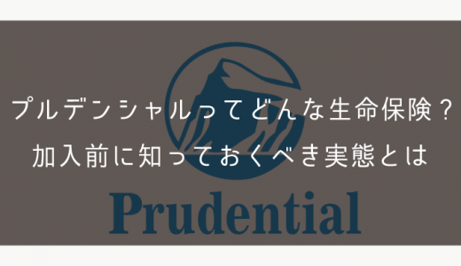 プルデンシャルってどんな生命保険?加入前に知っておくべき実態とは