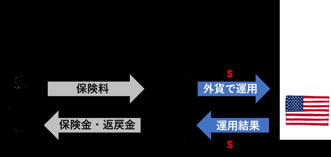 外貨建て保険のポイント