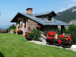 庭のある家